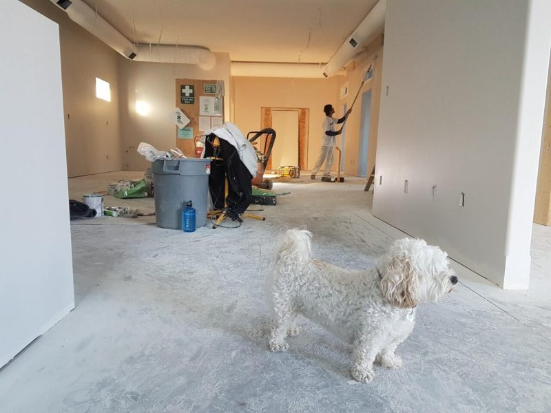 People painting a new home.
